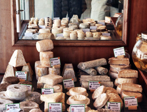 Top Italian Cheeses Loved and Used By Many